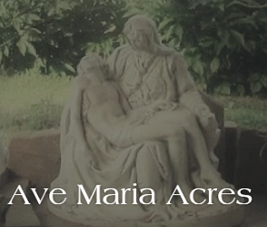 Ave Maria Acres Logo