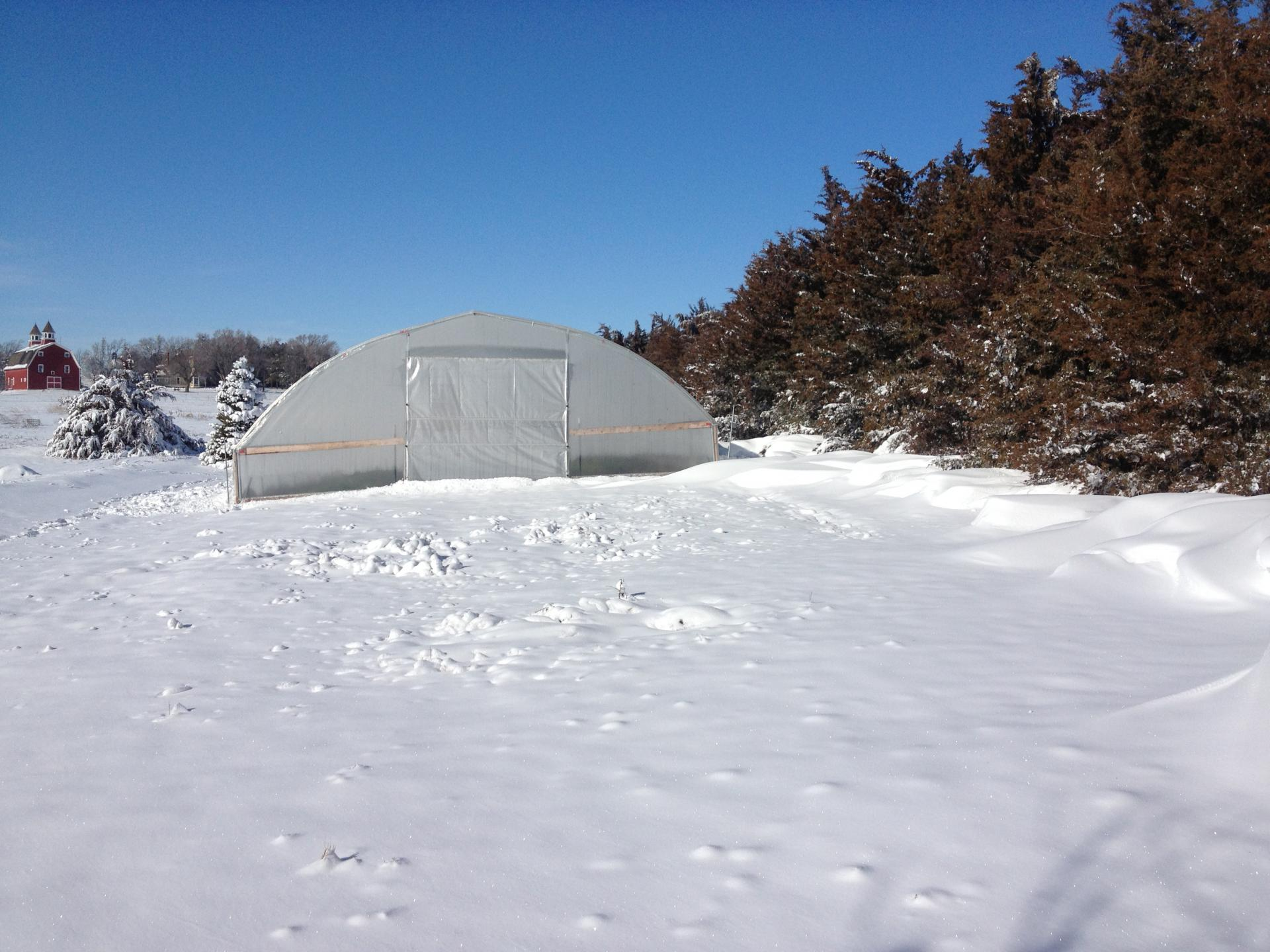 hoophouse in the snow