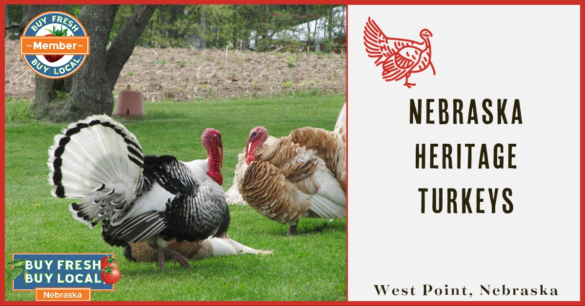 Nebraska Heritage Turkeys West Point Nebraska
