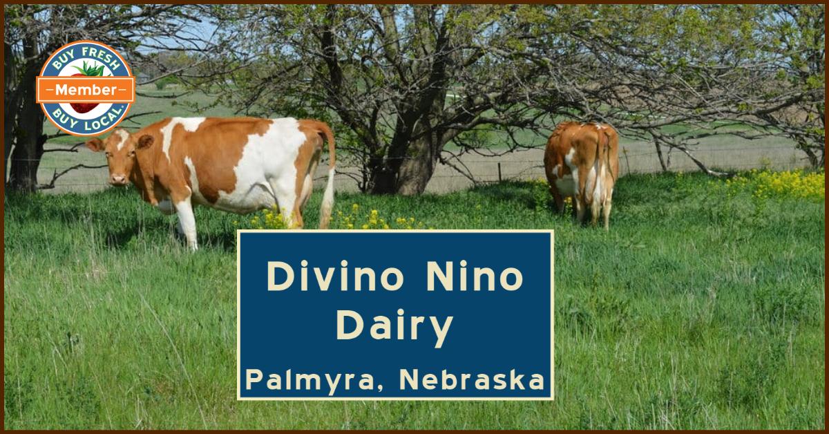 Divino Nino Dairy