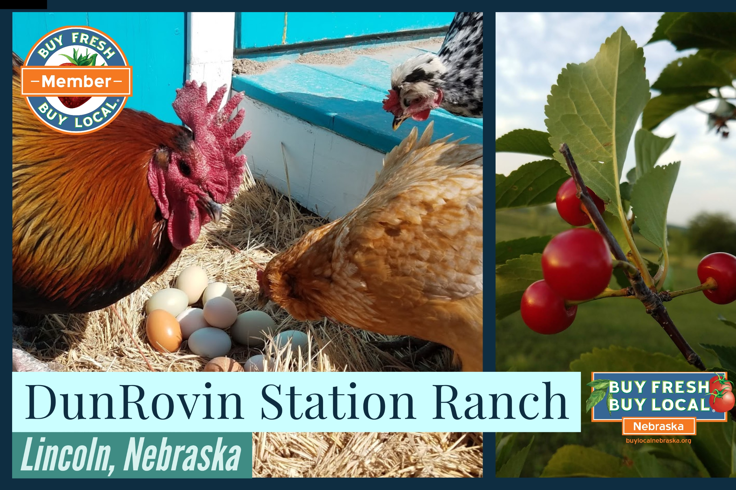 DunRovin Station Ranch Promotional Image