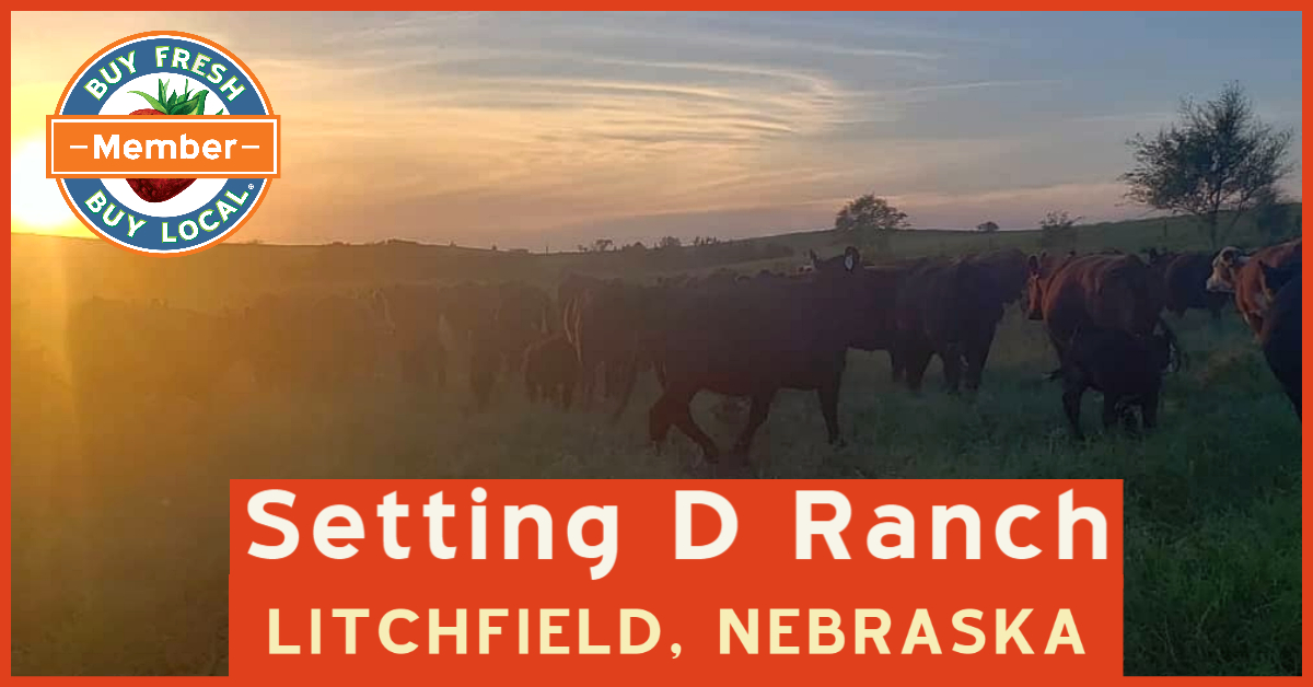 Setting D Ranch Promotional Image