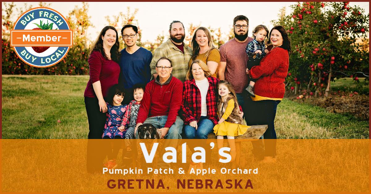 Vala's promotional image